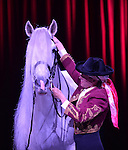 MIAMI, FL - FEBRUARY 05: Gala of the Royal Horses performance at the James L. Knight Center on Thursday February 5, 2015 in Coral Gables, Florida. (Photo by Johnny Louis/jlnphotography.com)