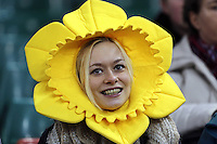 Pictured: A welsh supporter wearing a daffodil head. Saturday 08 November 2014<br />