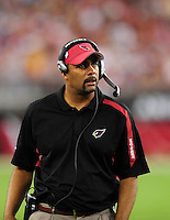 Sept. 27, 2009; Glendale, AZ, USA; Arizona Cardinals defensive backs coach Teryl Austin against the Indianapolis Colts at University of Phoenix Stadium. Indianapolis defeated Arizona 31-10. Mandatory Credit: Mark J. Rebilas-