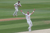 Peter Siddle of Essex claims the wicket of Harry Brook during Essex CCC vs Yorkshire CCC, Specsavers County Championship Division 1 Cricket at The Cloudfm County Ground on 9th July 2019