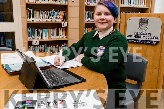 "Lily Eyers, student at Killorglin Community College who is preparing her project for the BT Young Scientist competition. The project title is ""An Investigation into the Knowledge, Attitudes & Behaviors towards Invisible Disabilities to create a wellbeing course for Secondary School Students."