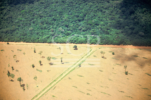 Mato Grosso/Goias state border, Brazil. Boundary between virgin rainforest and cleared land with access roads.