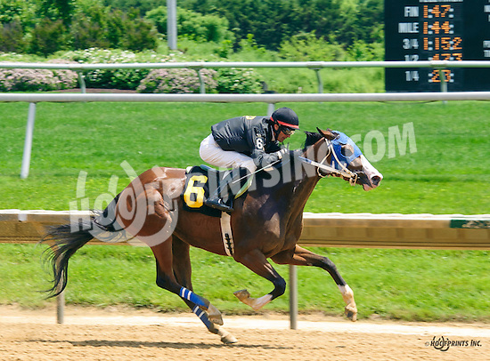 Dipped In Pearls winning at Delaware Park on 6/1/16