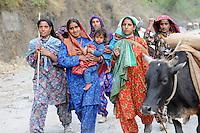Van Gujjar women on the road.
