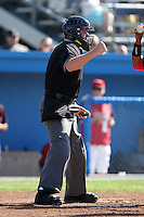 Home plate umpire Shane Livensparger during a game at Dwyer Stadium in Batavia, New York on July 10, 2010.  Photo By Mike Janes/Four Seam Images