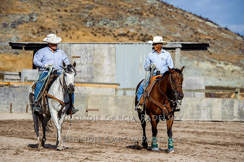 Father and son team roping partners.  San Luis Obispo, California  (Roy and Ron Garcia)