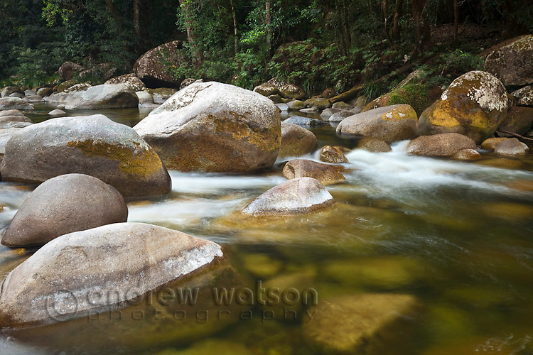 Rainforest stream at Mossman Gorge in the Daintree National Park.  Mossman, Queensland, Australia