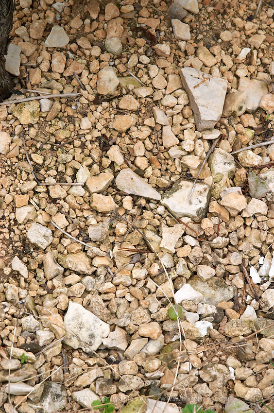 Soil detail. Stony. Calcareous. Domaine de la Perriere, Sancerre, Loire, France