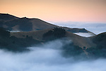 Coastal fog and rolling hills at dawn, in the rural countryside near Cambria, San Luis Obispo County, California