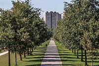 Parco Nord Milano. Vialetto alberato verso i palazzi del quartiere Bruzzano --- Parco Nord Milano (park north Milan). Tree-lined walkway towards the buildings in Bruzzano district