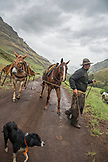 USA, Oregon, Joseph, Cowboy Cody Ross returns to his truck after moving cattle in the rain up Big Sheep Creek, Northeast Oregon