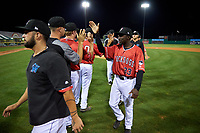 Batavia Muckdogs Milton Smith II (33) high fives teammates after a NY-Penn League game against the Lowell Spinners on July 11, 2019 at Dwyer Stadium in Batavia, New York.  Batavia defeated Lowell 5-2.  (Mike Janes/Four Seam Images)