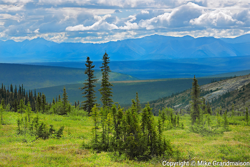 View of Mountains from Ogilvie Summit (KM 259) on the Dempster Highway<br /> Dempster Highway<br /> Yukon<br /> Canada