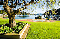 Spring in Picton Harbour - Marlborough, New Zealand
