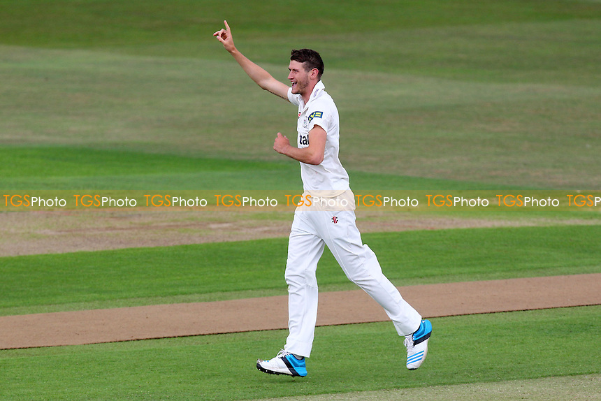David Payne of Gloucestershire celebrates the wicket of Nick Browne - Essex CCC vs Gloucestershire CCC - LV County Championship Division Two Cricket at the Ford County Ground, Chelmsford - 30/06/14 - MANDATORY CREDIT: Gavin Ellis/TGSPHOTO - Self billing applies where appropriate - contact@tgsphoto.co.uk - NO UNPAID USE