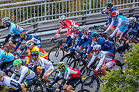 Picture by Alex Whitehead/SWpix.com - 24/09/2017 - Cycling - 2017 UCI Road World Championships, Day 8 - Bergen, Norway - Elite Men's Road Race.