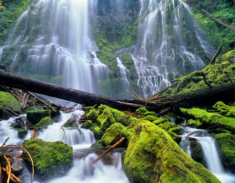 Closeup of Proxy Falls. Three Sisters Wilderness. Willamette National Forest, Oregon.