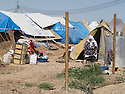 Iraq 2013  .The unofficial camp where the newcomers have to wait before to settle in Domiz Refugee camp  .Irak 2013 .Le camp officieux de Domiz ou les nouveaux arrivants s'nstallent avant de trouver de la place dans le camp officiel