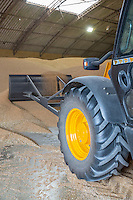 JCB pushing winter wheat in store -  Lincolnshire, August