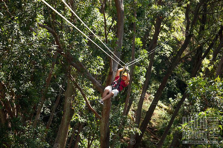 Man Zip-lining through the air and rainforest with Kohala Ziplining in North Kohala on the Big Island.