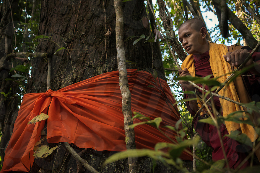 November 4, 2013 - Areng Valley (Koh Kong). A monk during a tree-blessing ceremony in a forest nearby Pra Lay Village. © Thomas Cristofoletti / Ruom
