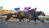Calibrachoa, in the orange cap, nips Caleb's Posse at the wire in the Tom Fool at Aqueduct.
