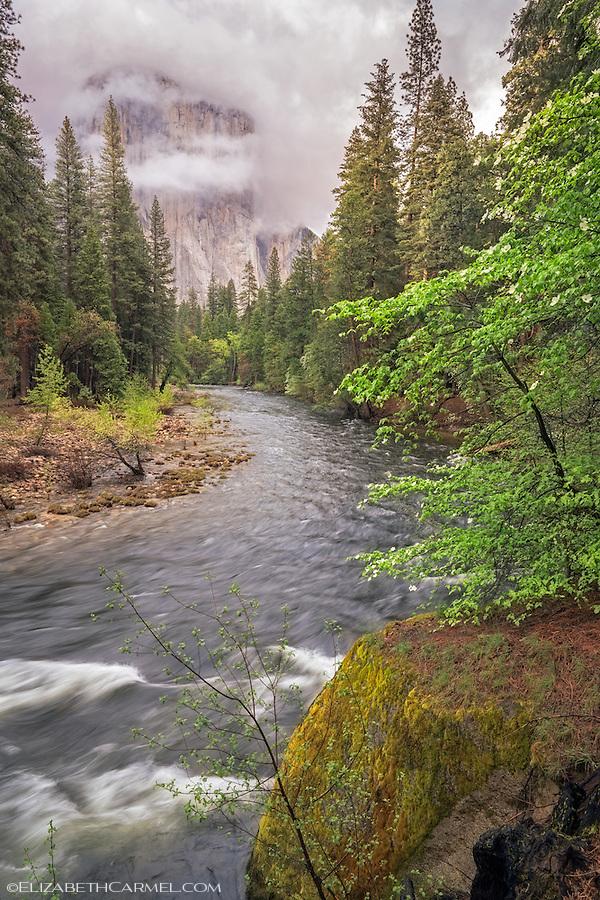 Spring Storm, Yosemite