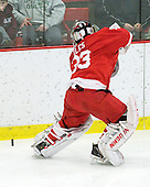 Andy Iles (Cornell - 33) - The visiting Cornell University Big Red defeated the Harvard University Crimson 2-1 on Saturday, January 29, 2011, at Bright Hockey Center in Cambridge, Massachusetts.