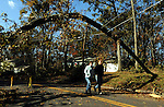 Jeff and Carol Scheuing walk in their neighborhood where walking under and around downed trees a power lines is the new norm, Friday, Nov. 4, 2011, on Oak Street in South Windsor. Public safety officials in South Windsor are publicly criticizing CL+P for not clearing the trees from the power lines making access problems for emergency equipment. Oak Street is among the  worst where 8 houses are completely cut off for emergency equipment.  Jim Michaud/Journal Inquirer)