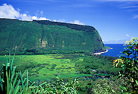 Waipio Valley, as seen from the road leading into the valley