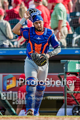28 February 2019: New York Mets catcher Ali Sanchez in action during a Spring Training game against the St. Louis Cardinals at Roger Dean Stadium in Jupiter, Florida. The Mets defeated the Cardinals 3-2 in Grapefruit League play. Mandatory Credit: Ed Wolfstein Photo *** RAW (NEF) Image File Available ***