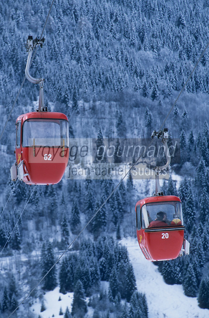 Europe/Suisse/Saanenland/Env Gstaad: Col du Pillon - Télécabine aux Diablerets