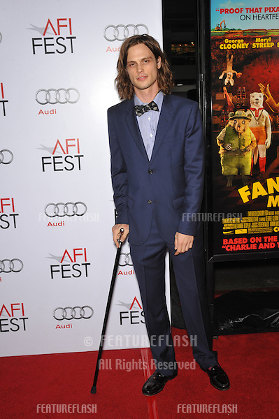 """Criminal Minds"" star Matthew Gray Gubler at the Los Angeles premiere of ""Fantastic Mr. Fox"" - the gala opening night of the AFI Fest 2009 -  at Grauman's Chinese Theatre, Hollywood..October 30, 2009  Los Angeles, CA.Picture: Paul Smith / Featureflash"