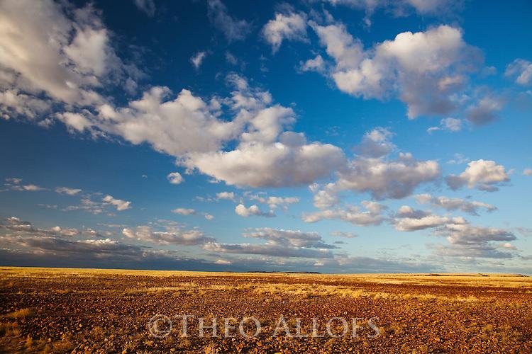 Australia, Queensland;  Sturt Stony Desert