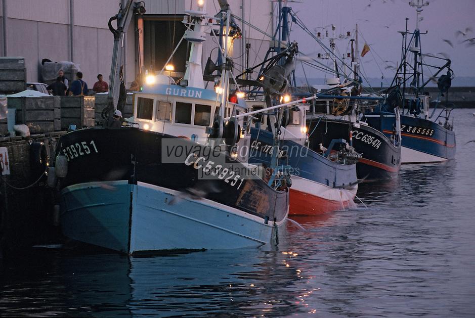 Europe/France/Bretagne/29/Finistère/Douarnenez: Déchargement des bateaux au retour de la pêche à la sardine sur le port