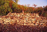 Hawaiian Hikiau heiau, a religious place of worship, found in Kealakekua