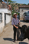 Lin-Pogradec-Albania - August 02, 2004---A man and his cow at/from the village of Lin; region/village of project implementation by GTZ-Wiram-Albania (German Technical Cooperation, Deutsche Gesellschaft fuer Technische Zusammenarbeit (GTZ) GmbH); agriculture-people---Photo: © HorstWagner.eu