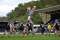London Wasps v Bath