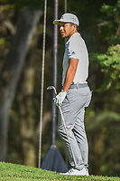 Xander Schauffele (USA) appears happy with his chip up tight on 7 during round 1 of the World Golf Championships, Mexico, Club De Golf Chapultepec, Mexico City, Mexico. 2/21/2019.<br /> Picture: Golffile | Ken Murray<br /> <br /> <br /> All photo usage must carry mandatory copyright credit (© Golffile | Ken Murray)