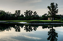 Diamond Country Club, Vienna, Austria.Photo Credit / Phil Inglis.....