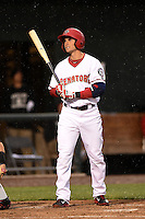 Harrisburg Senators second baseman Rick Hague (5) at bat during a game against the New Britain Rock Cats on April 28, 2014 at Metro Bank Park in Harrisburg, Pennsylvania.  Harrisburg defeated New Britain 9-0.  (Mike Janes/Four Seam Images)