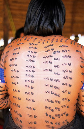 Bacaja village, Amazon, Brazil. A young mans back painted with genipapu and charcoal seed design; Xicrin tribe.
