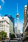 View of downtown Auckland, New Zealand, including the Sky Tower