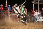 SEBRA - Powhatan, VA - 9.6.2014 - Bulls & Action