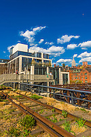 Elevated park The High Line is a 1.45-mile-long New York City linear park built in Manhattan on an elevated section of a disused New York Central Railroad spur called the West Side Line. New York, New York USA.