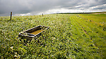 Chalk downland landscape upland scenery All Cannings Down, near East Kennet, Wiltshire, England dramatic dark clouds in sky