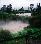 Hot bubbling mud pool, Rotorua, New Zeland