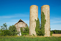 Neglected barn and silos, Delaware, USA