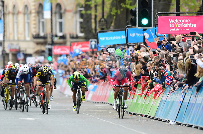 Sprint finish with Nacer Bouhanni (FRA) Cofidis, Caleb Ewan (AUS) Orica-Scott and Jonathan Hivert (FRA) Direct Energie for the finish line of Stage 2 of the Tour de Yorkshire 2017 running 122.5km from Tadcaster to Harrogate, England. 29th April 2017. <br /> Picture: ASO/A.Broadway | Cyclefile<br /> <br /> <br /> All photos usage must carry mandatory copyright credit (&copy; Cyclefile | ASO/A.Broadway)