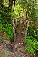 Wooden Footbridge on Boulder River Trail, Mt. Baker-Snoqualmie National Forest, Washington, US